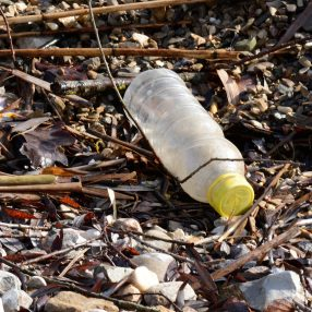 Plastic fles als zwerfvuil